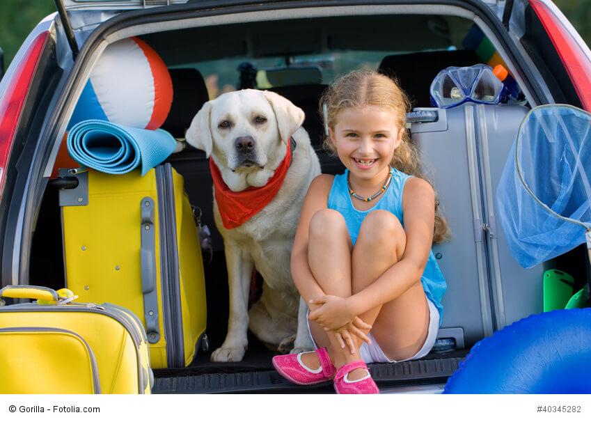 Ein kleines, blondes Mädchen sitzt mit einem großen Hund mit rotem Tuch um in dem Kofferraum eines Autos zwischen Koffern.
