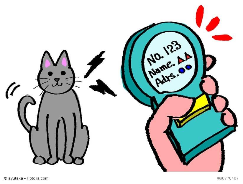 Die Zeichnung zeigt eine Katze, die mit einem Lesegerät identifiziert wird