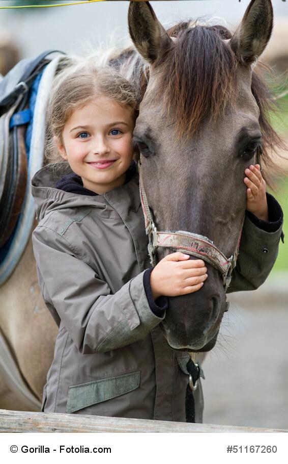 Pferde gehören zu den beliebtesten Haustieren weltweit