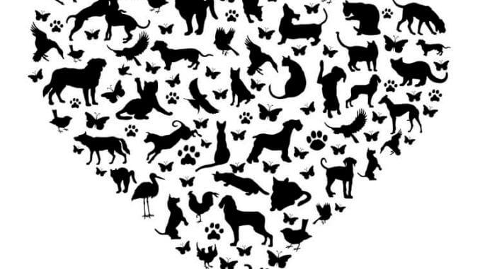 Ein Herz geformt aus verschiedenen Tierbildern im schwarzen Scherenschnitt