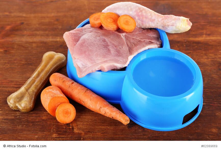 Die richtige Ernährung hängt von Größe und Akitivitätsgrad des Hundes ab