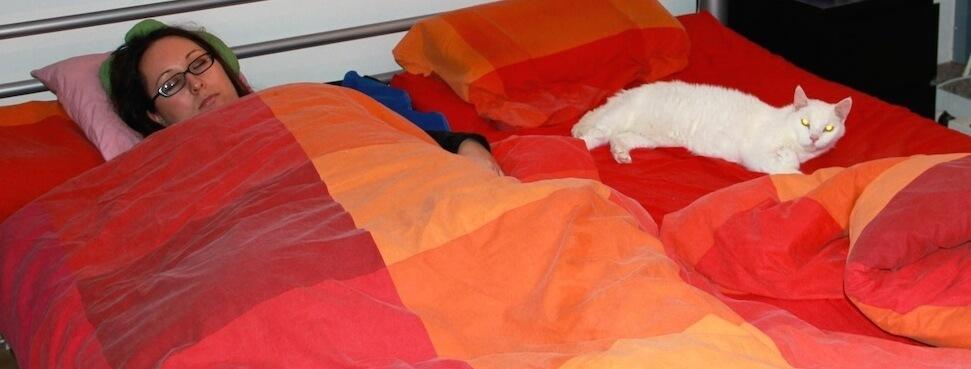 Eine Frau und ein weisser Kater liegen schlafend in einem Bett