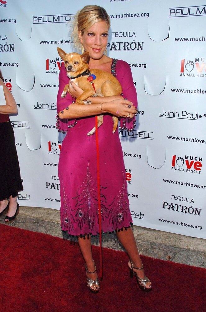 Tori Spelling mit Hund auf der Bow Wow Ciao
