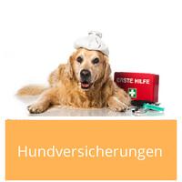 Welche Hundeversicherungen es gibt und welche du benötigst, findest du in diesem Artikel