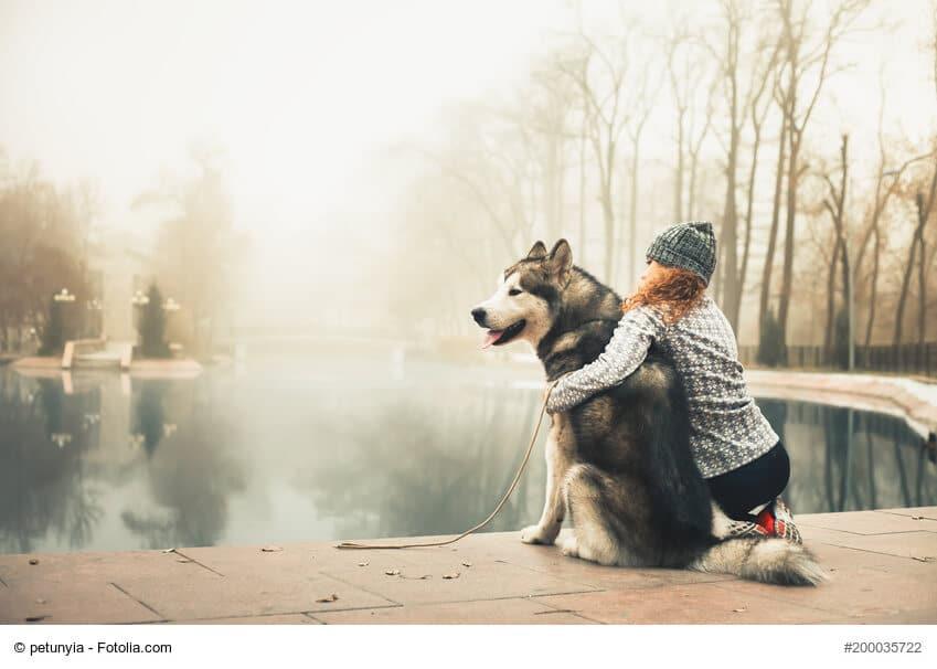 Junges Mädchen mit Alaskan Malamute im Arm