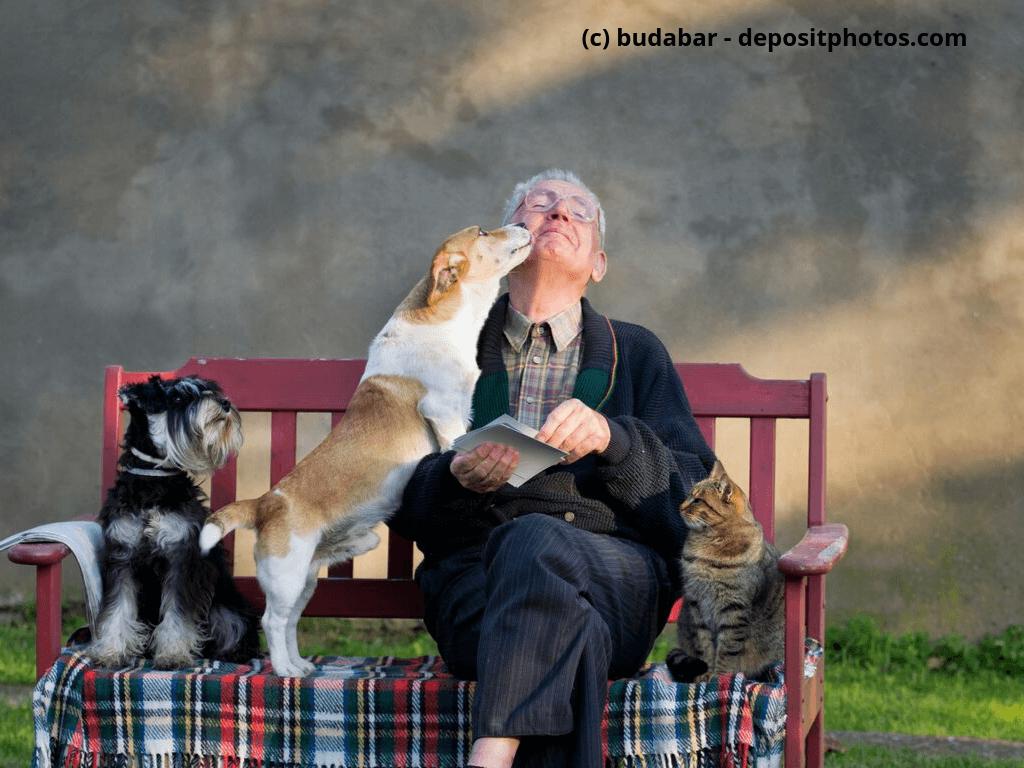 Alter Mann mit seinem Haustier