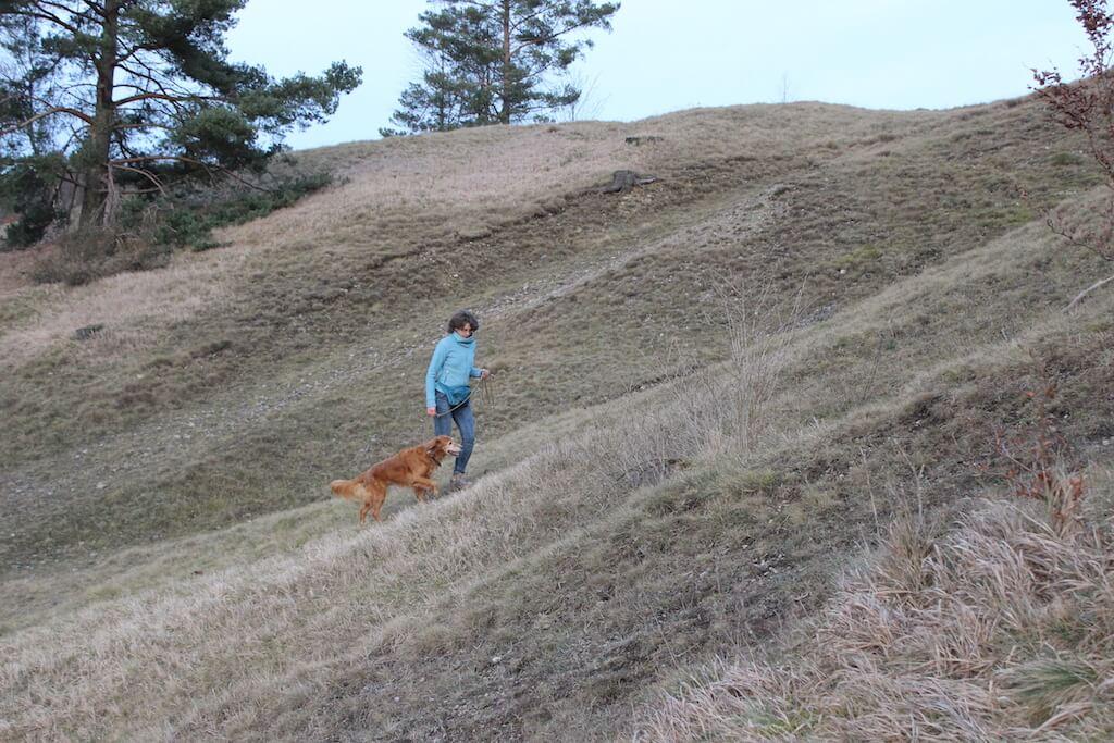 Besitzer und Hund nutzen Hügel und Gefälle wie Böschungen zum Training des alten, braunen Hundes