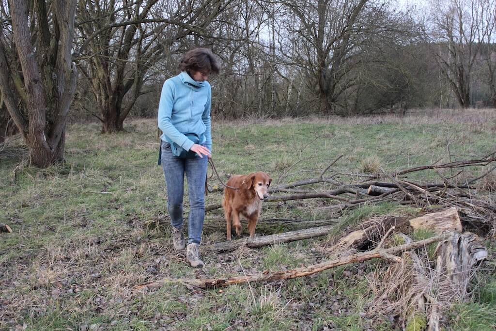 Frauchen geht mit ihrem Hund an der Leine über Baumstämme und Äste. So bewegt der Hund automatisch alle Gelenke.