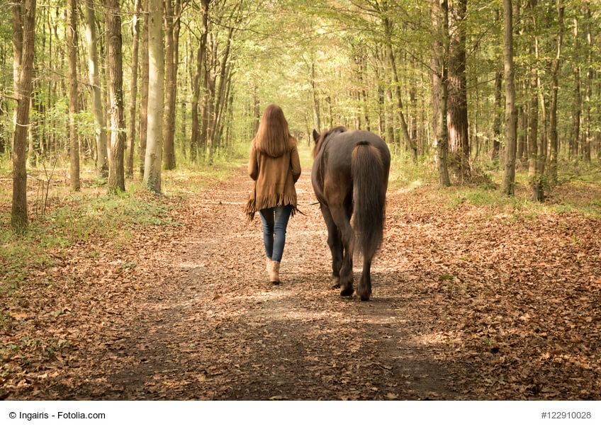 Ältere Tiere möchten auch beschäftigt werden, z.B. mit einem Spaziergang