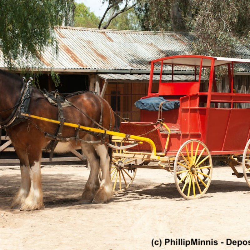 Rote Kutsche mit Clydesdale