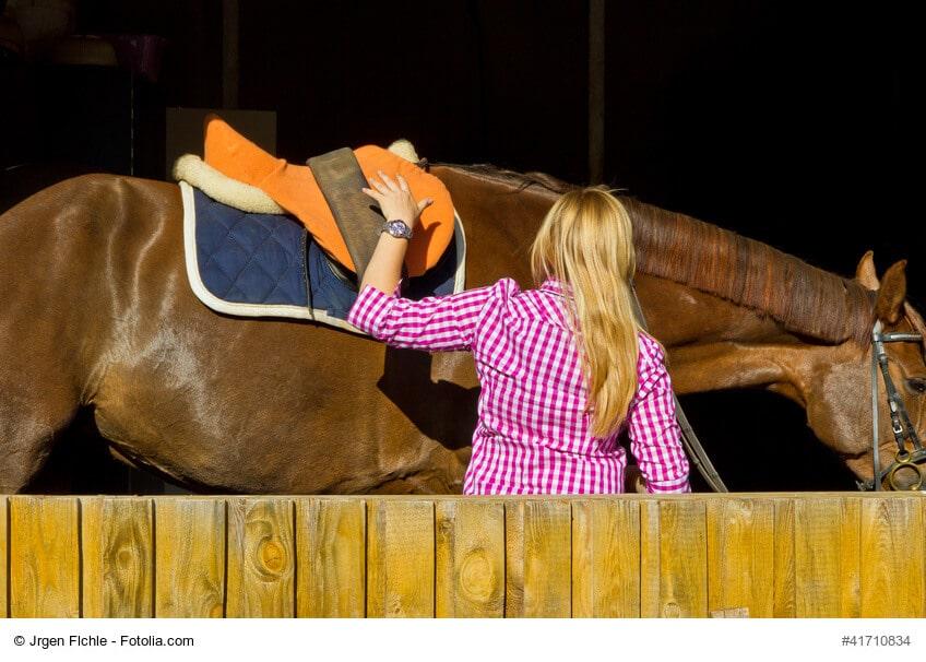 Entspanntes Pferd während des Aufsatteln