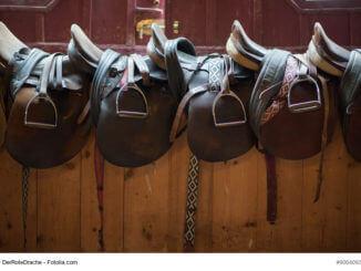 Der richtige Sattel für mein Pferd