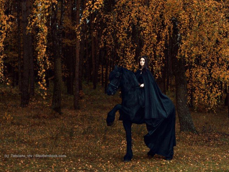 Gothicshow mit Friese