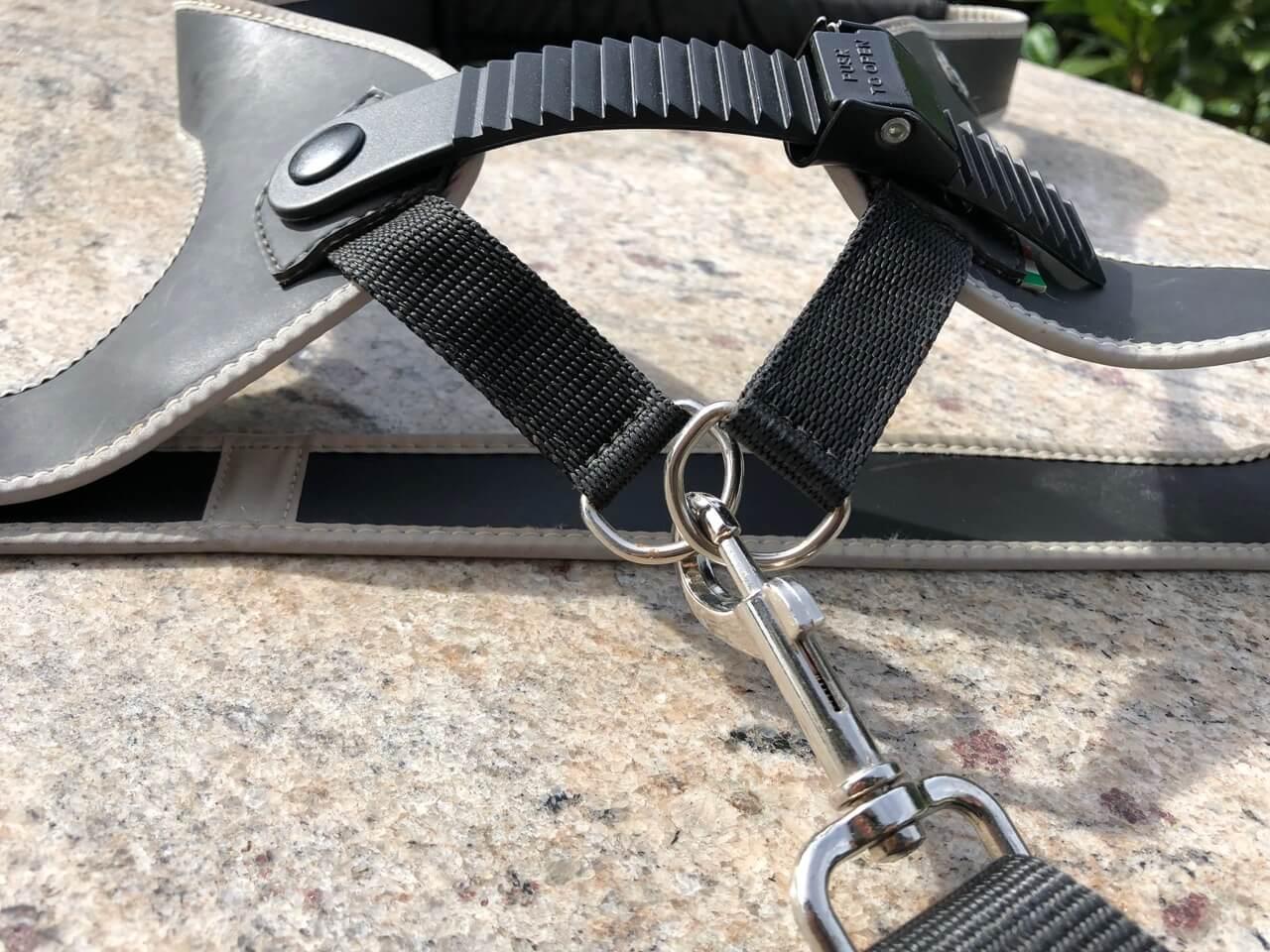 Befestigung Leine TrePonti Hundegeschirr