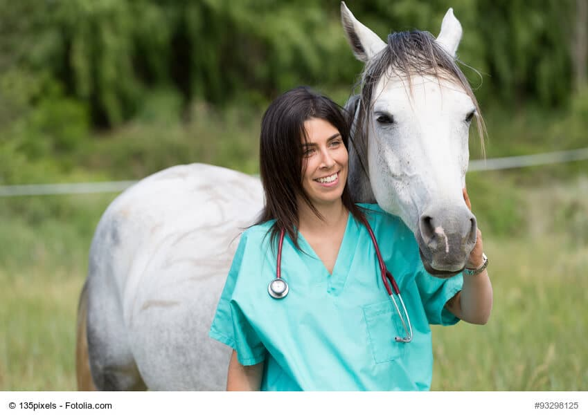 Lange Pferdegesundheit durch ausgewogene Fütterung