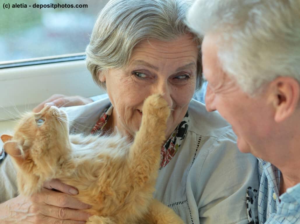 Älteres Ehepaar kuschelt mit roter Langhaar-Katze.