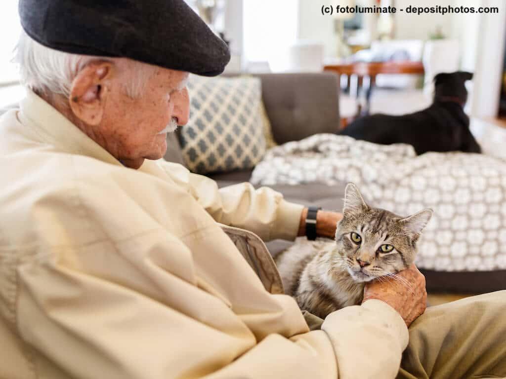 Ein alter Mann mit Mütze sitzt mit Tigerkatze auf dem Schoß in Wohnung.