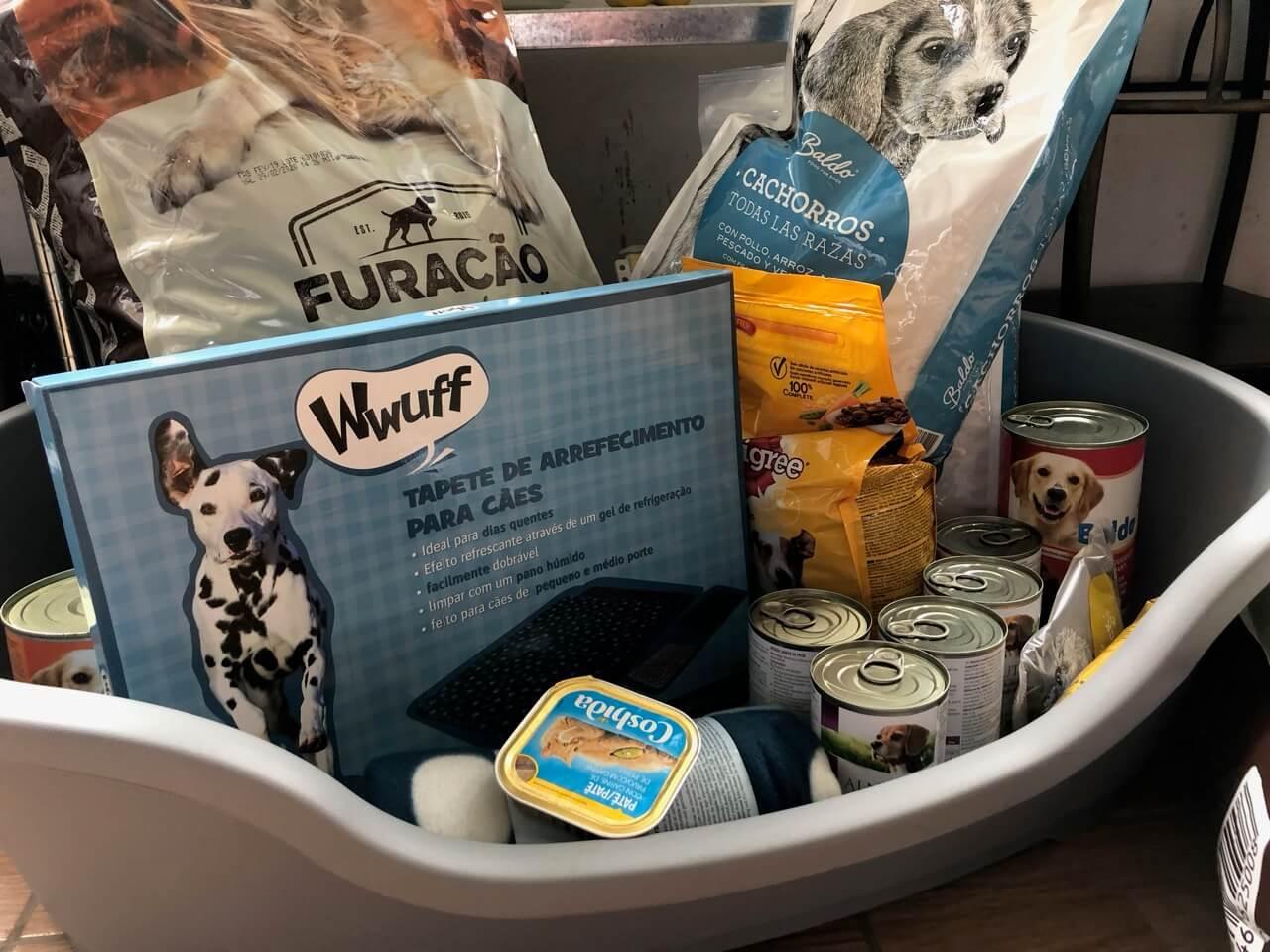 Ein Hundebett aus Plastik in dem Trockenfutter und Dosen stehen als Spenden für ein Tierheim, den Tierschutz