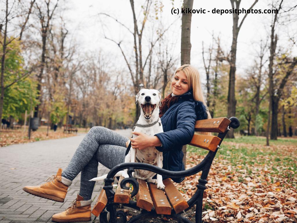 Hund sitzt mit Frau auf Parkbank