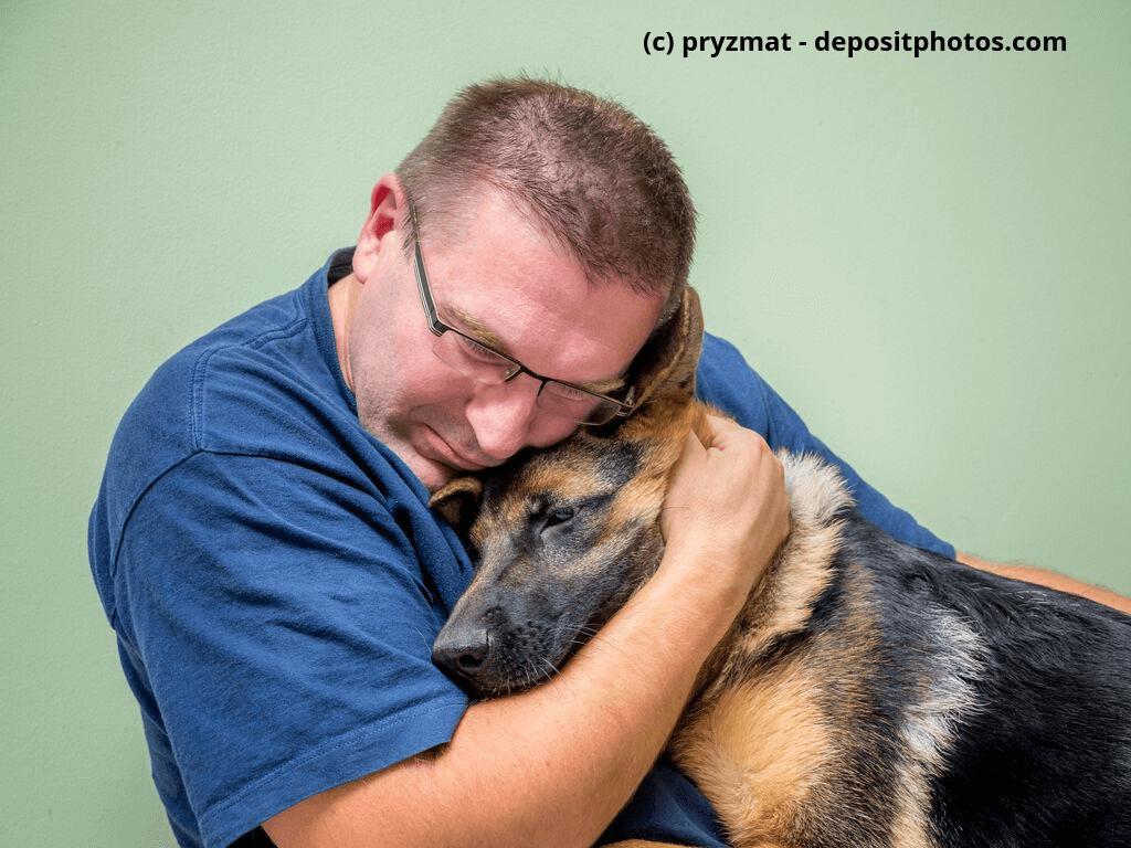 Hund tröstet Mann