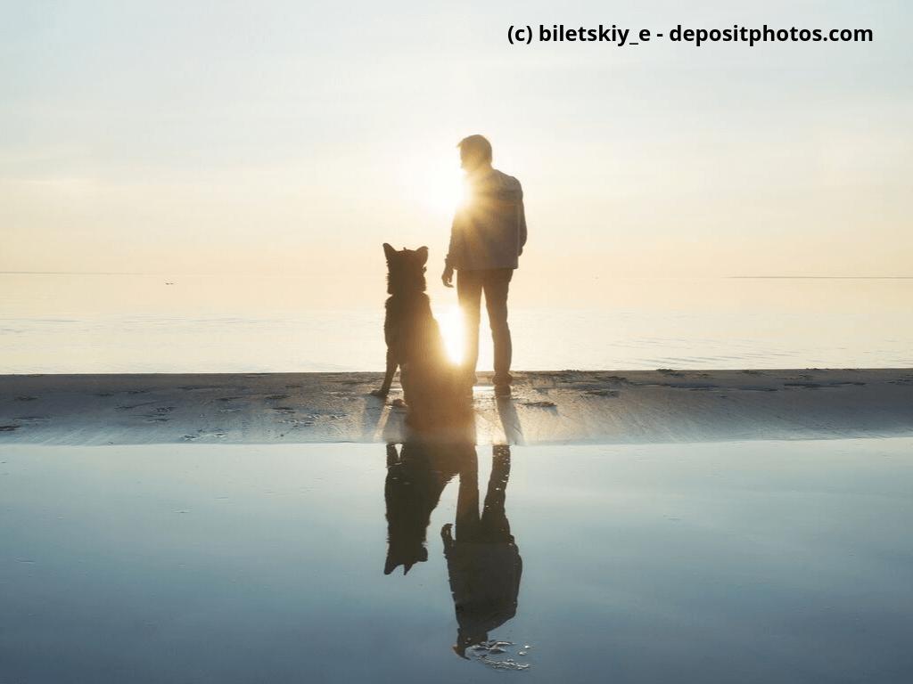 Hund mit seinem Herrschen am Strand