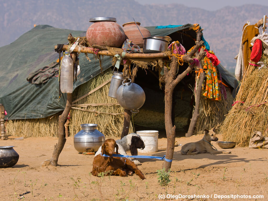 Eine Hütte in der Wiese davor eine Feuerstelle, zwei Ziegen und ein Hund