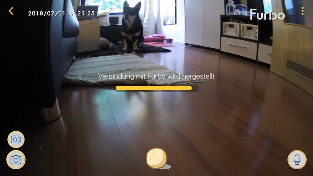 Screenshot aus der App der Hundekamera Furbo heraus