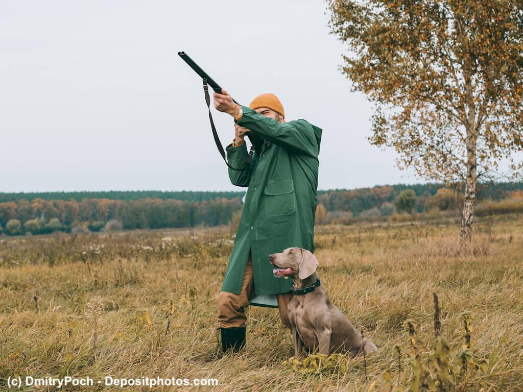 Jäger schießt, Jagdhund sitzt aufmerksam daneben