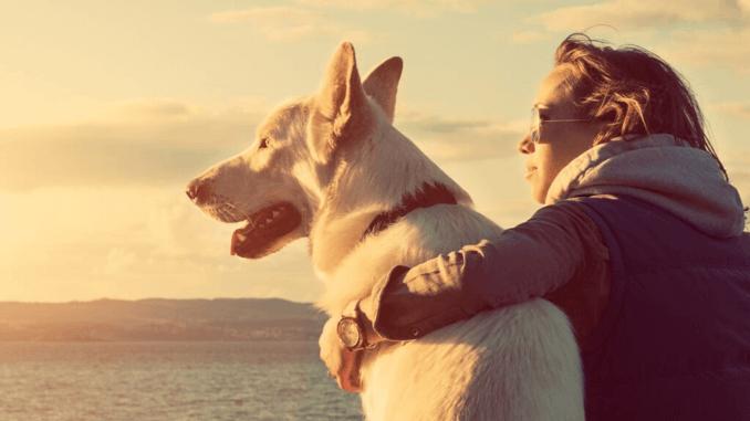 Junges Mädchen mit ihrem Hund an einem Strand