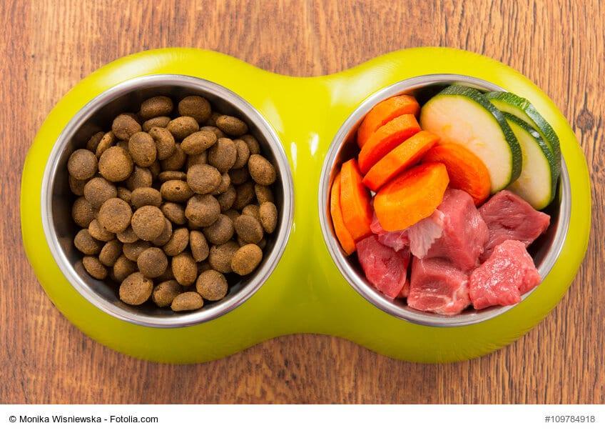 Ein Fressnapf mit zwei Schüsseln: eine mit Trockenfutter eine mit rohem Fleisch und Gemüse