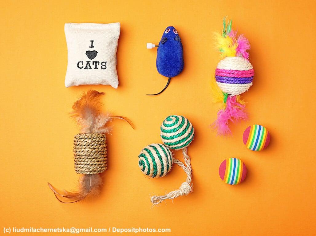 Spielzeug und Produkte für Katzen