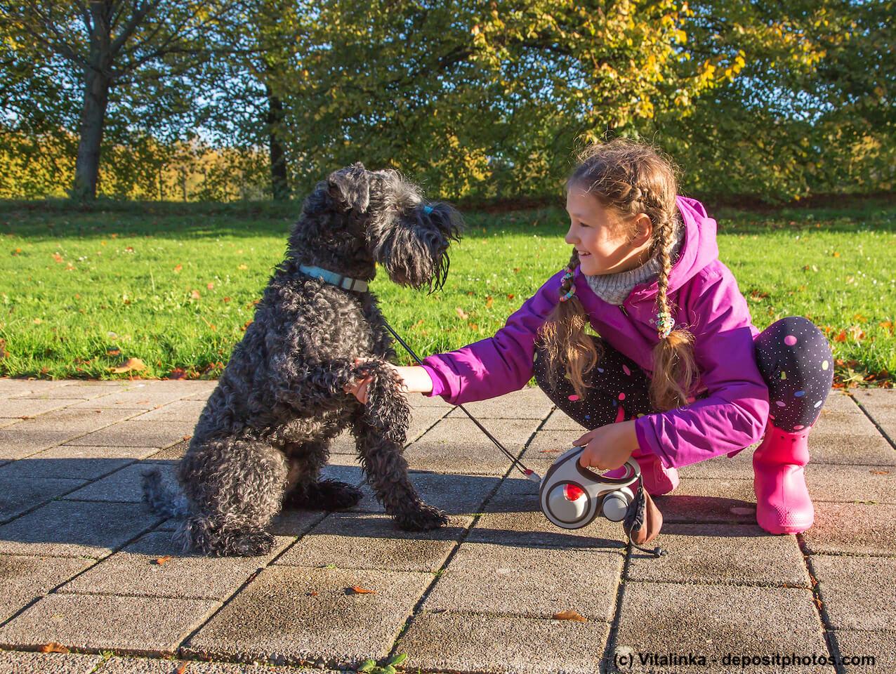 Kerry Blue Terrier mit Mädchen