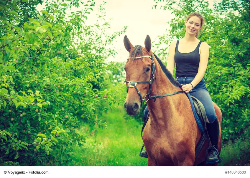 Als Reiter ist man viel an der frischen Luft, bei Sonne UND Regen