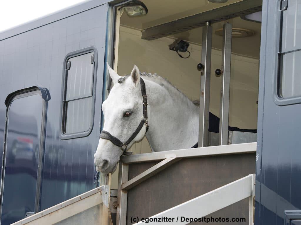 Pferdediebstahlversicherung gegen Unglück beim Pferdetransport