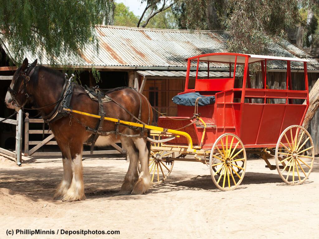 Die normale Pferdehaftpflichtversicherung reicht bei z.B. Kutschfahrten nicht aus