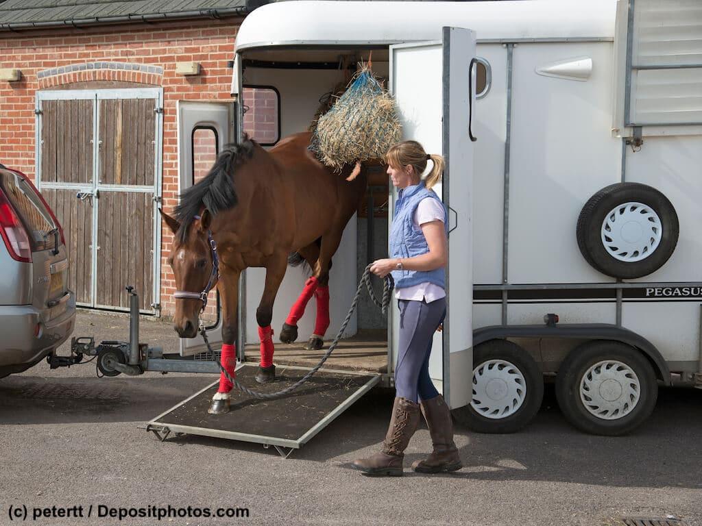 Bei welchen Unfällen zahlt eine Pferdetransportversicherung?