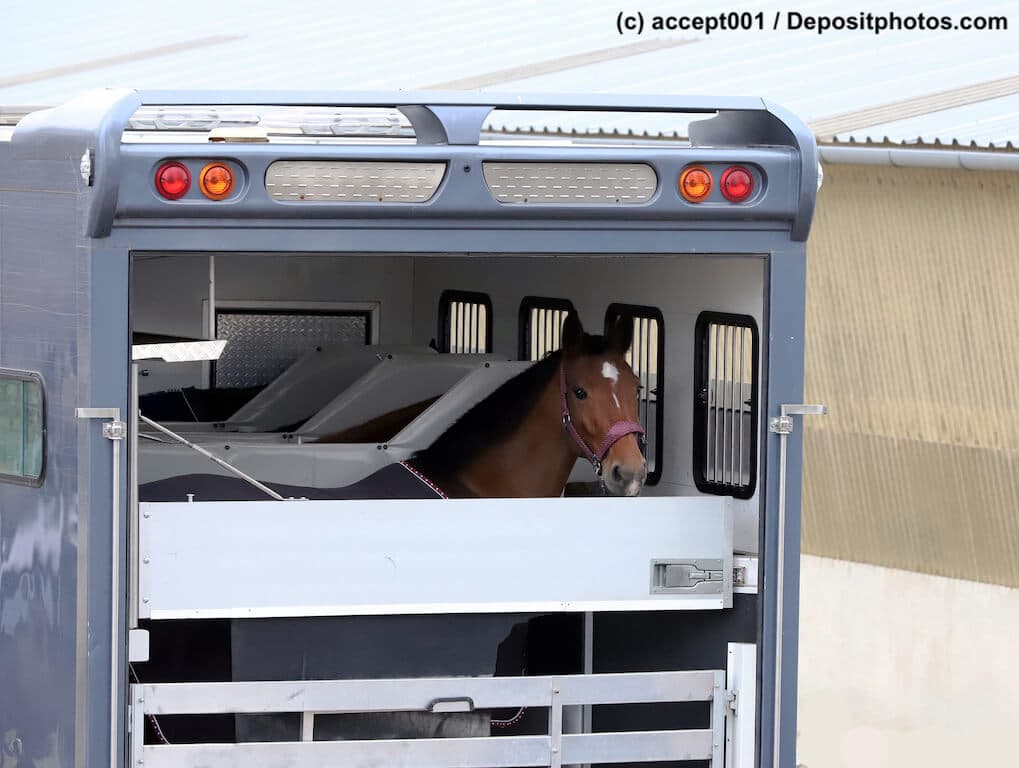 pferdetransportversicherung ein ratgeber haustiermagazin. Black Bedroom Furniture Sets. Home Design Ideas