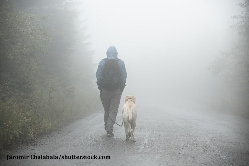 Mann geht Gassi mit seinem Hund im Nebel