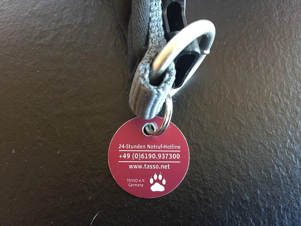 Tasso Marke mit Notfallnummer an einem Hundehalsband