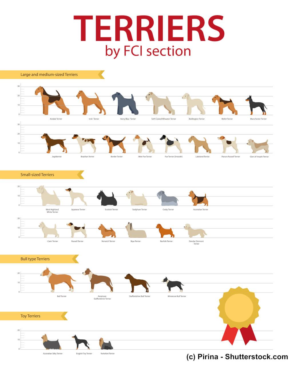 Übersicht FCI Terrier