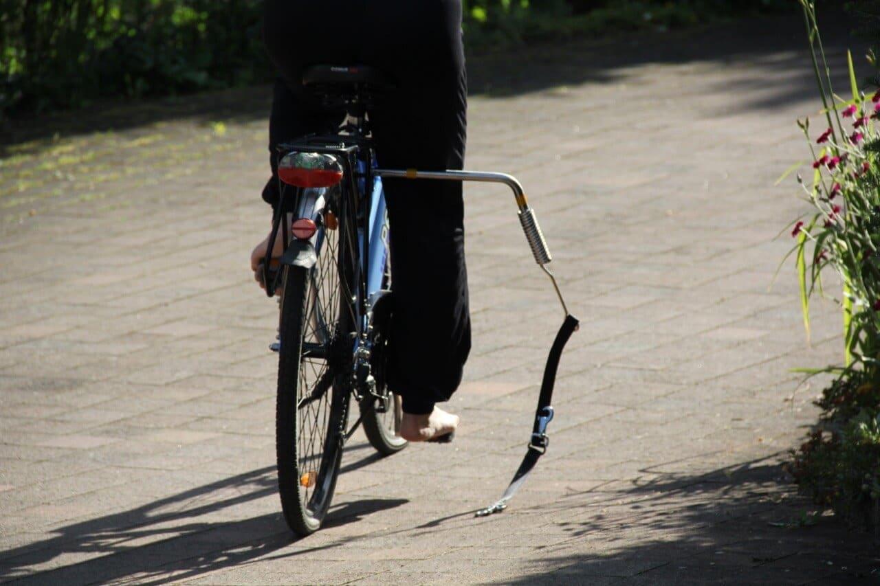 Verbesserung Trixie Bike Set