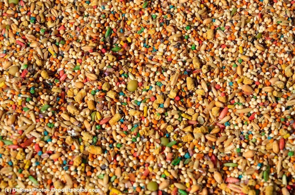 Vogelfutter aus verschiedenen Körnern und Samen