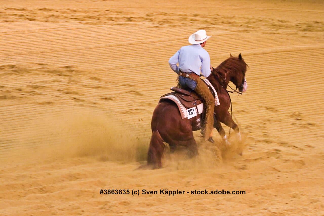 Warmblut mit Cowboy beim Westernsport.