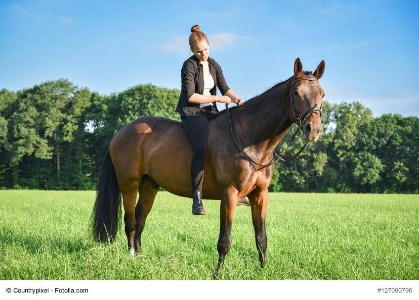 zu oft ohne Sattel zu reiten tut weder Mensch noch Pferd gut