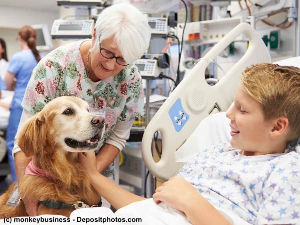 ältere Frau mit Therapiehund zu Besuch am Krankenhausbett eines Jungen