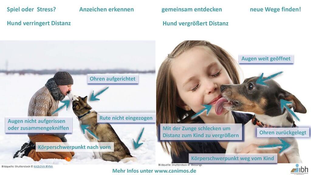 Canimos Verlag Infografik Kuss zur Distanzvergroesserung