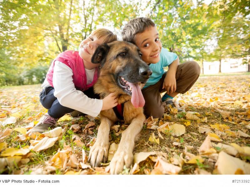 Kinderfreundlich und geduldig – bei guter Erziehung können auch Kinder alleine mit ihm losziehen.