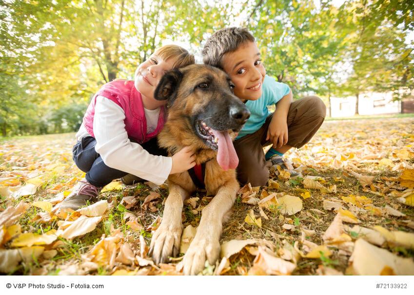 Kinderfreundlich und geduldig - bei guter Erziehung können auch Kinder alleine mit ihm losziehen.