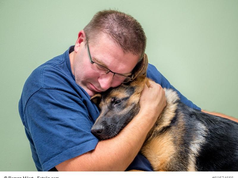 Auch wenn er eigentlich ein Wachhund ist, freut sich ein Schäferhund über Schmuseeinheiten.
