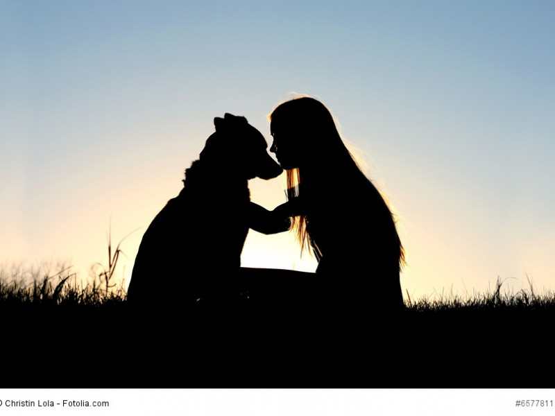 Hast du dir einmal die Freundschaft eines Schäferhundes verdient, behältst du sie für den Rest eines Hundelebens.
